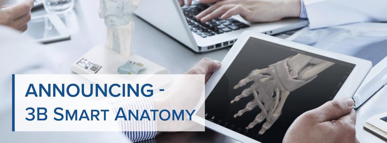 Medical Simulators, Anatomical Models and Charts, Therapy