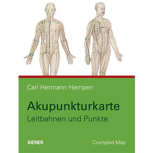 Acupuncture Map - pathways and points, 1015640, Acupuncture accessories