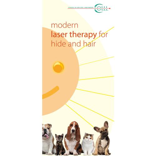 Flyer Laser Therapy and Laser Acupuncture Vet Small animals, EN, 1018607, Acupuncture Charts and Models
