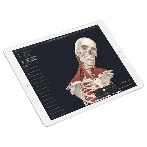 Complete Anatomy – Student Plus License, 10263 [CA-STU], Complete Anatomy