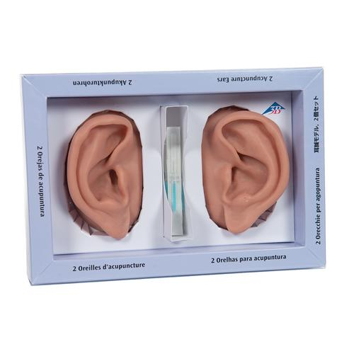 3B Ear set, one left and right ear, 1000373 [N15], Ear Models