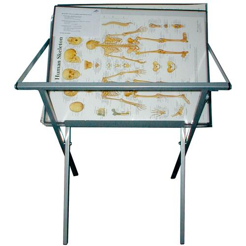 3b Scientific Stark Pilates Combo Chair: Practical Chart Display Stand For Storage Of Laminated