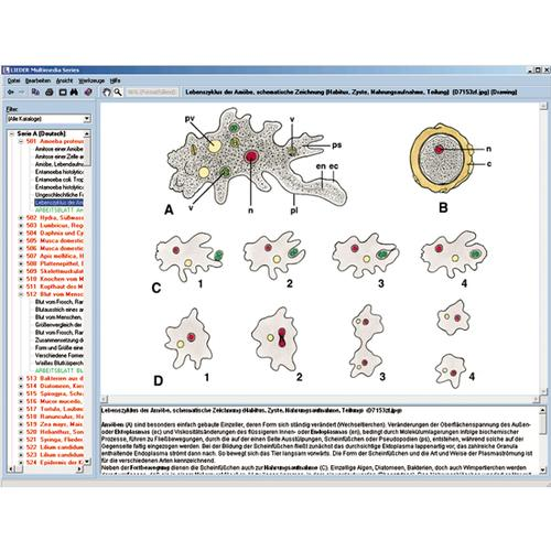 CD with micro images for school series A, 1004269 [W13450], Biology Software