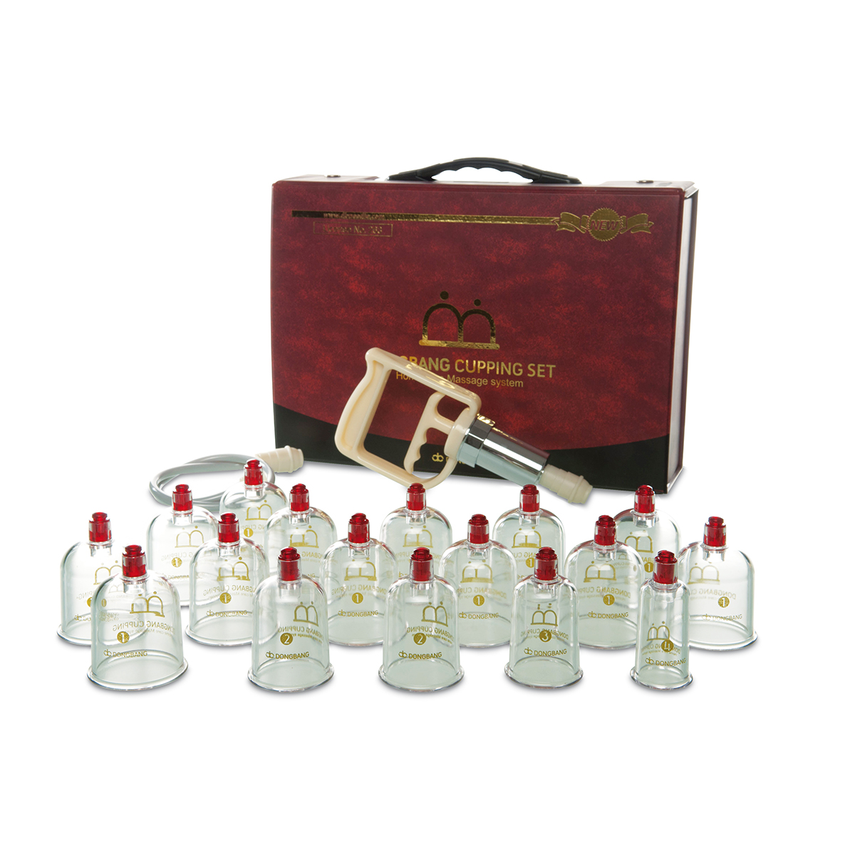 Image result for cupping set with pump