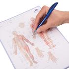 Acupuncture Meridian notepad&#x3b; FR, 1017881, Acupuncture Charts and Models