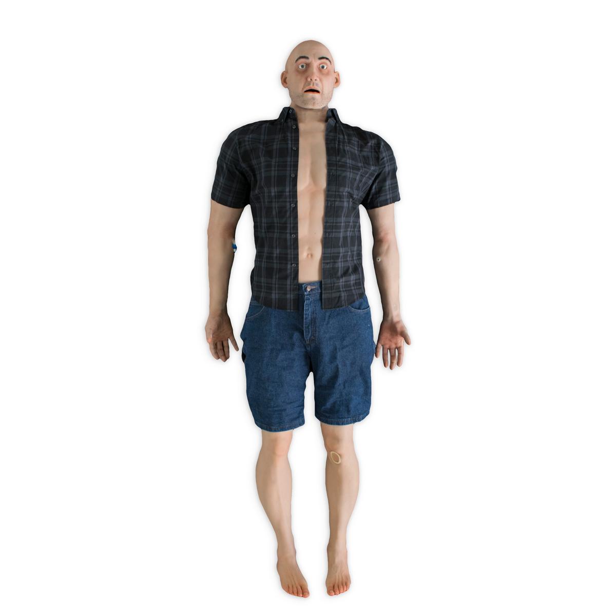 Excelente Adam Software Anatomy Viñeta - Anatomía de Las Imágenesdel ...