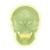 Glow in the Dark Skull Model, 1020163 [A20/N], Halloween Bones and Gifts (Small)