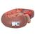 Basic Kidney Section Model, 3 times Full-Size - 3B Smart Anatomy, 1000295 [K09], Urology Models (Small)