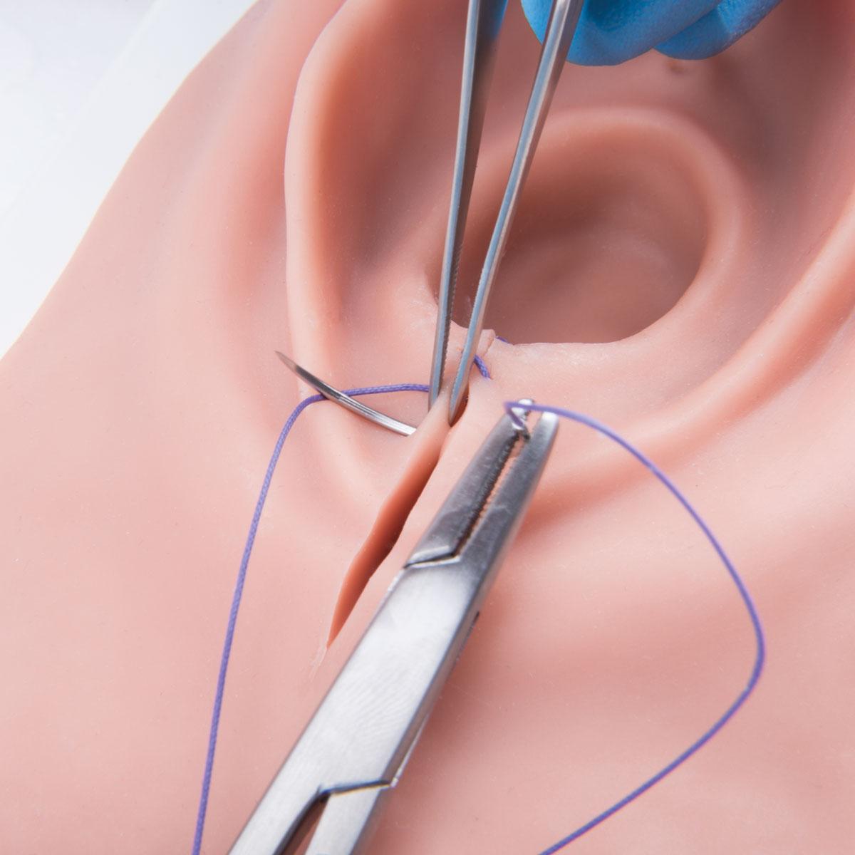 Episiotomy And Suturing Simulator 1019639 3b