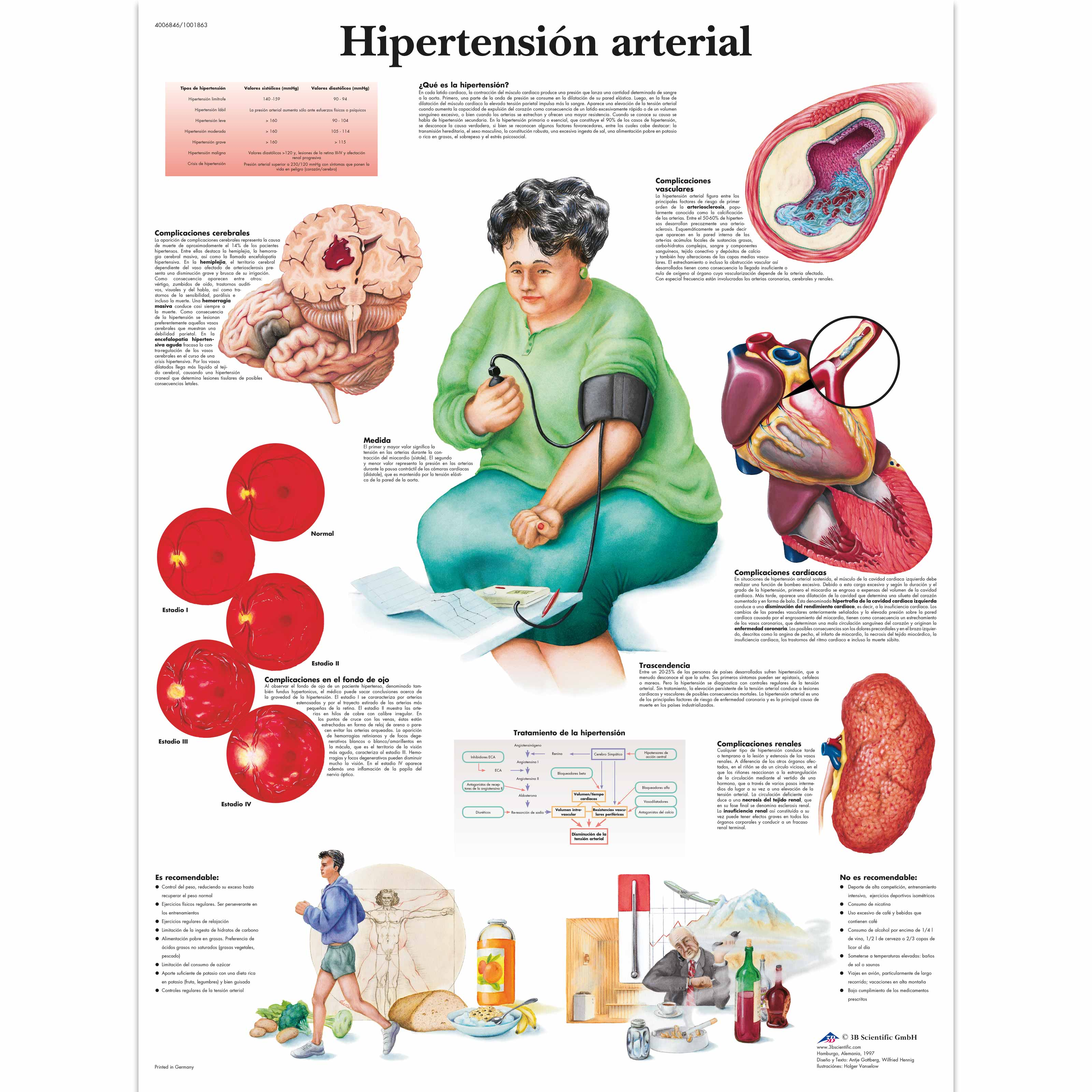Agonista alfa 2 hipertensión