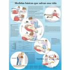 Medidas básicas que salvan, 4006889 [VR3770uu], Emergency and CPR