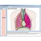 The human respiratory and circulatory systems, the human heart, Interactive CD-ROM, 1004278 [W13509], Biology Software