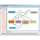 Hormones, hormone system and control, Interactive CD-ROM, 1004282 [W13513], Biology Software