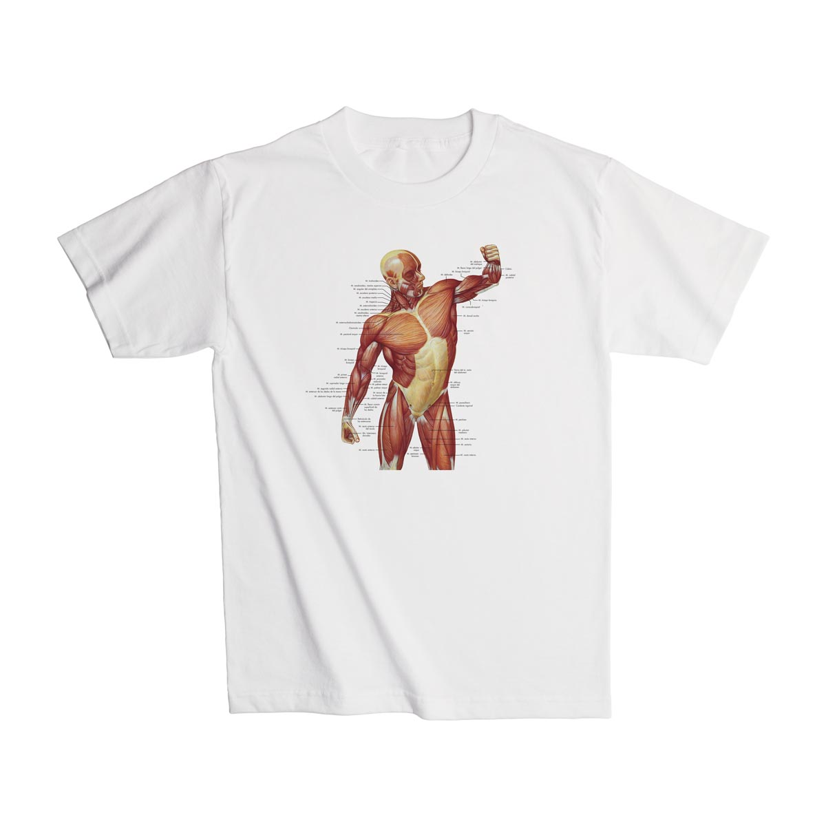 Geek Gifts - Geek T-Shirts - Geek Tees - Anatomy Shirts - Science ...