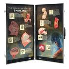 Consequences of Smoking, 3D Info Board,W43047