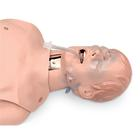 Critical Airway Management Trainer, 1017955 [W99836], Airway Management Adult